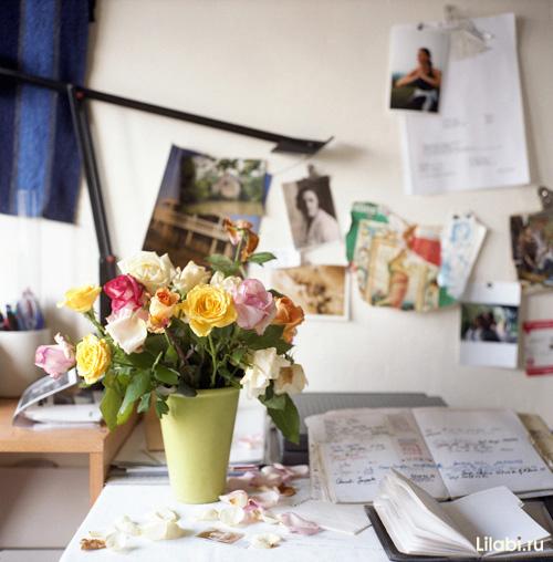 cvety_v_interere_kvartiry_foto_