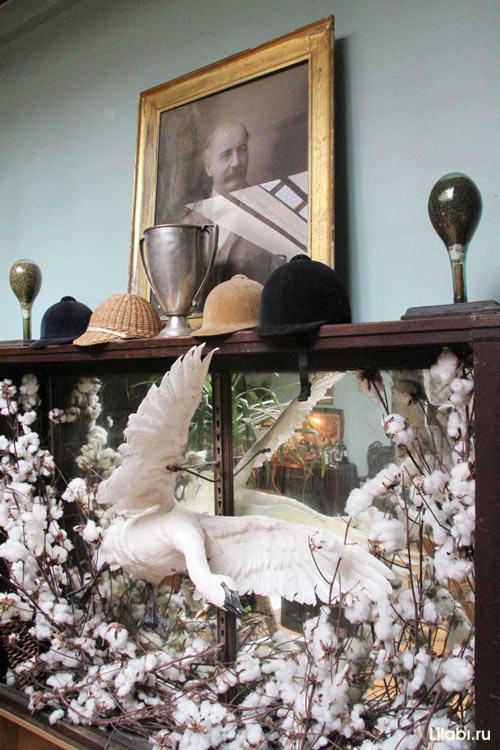 Необычный интерьер дома коллекционера