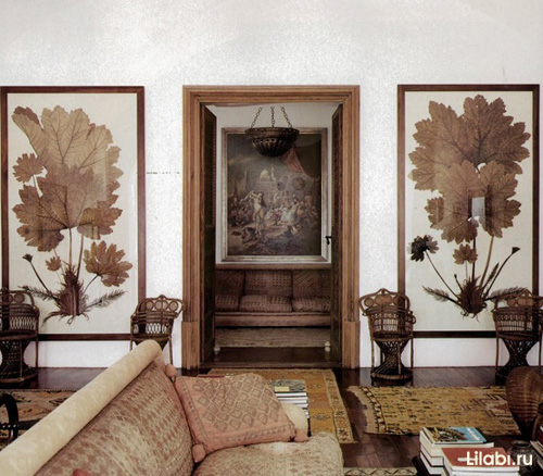 Украшение стен в квартире гербариями, ботаническими и анималистическими таблицами